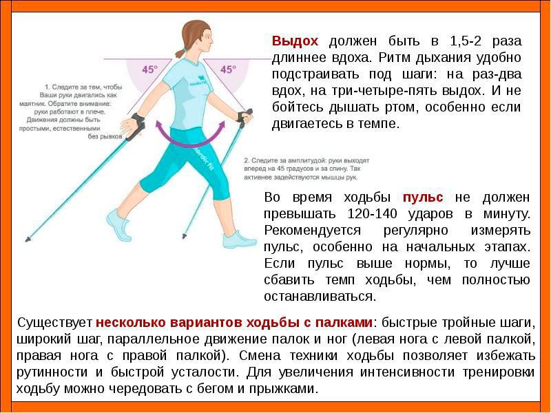 Скандинавская ходьба сколько надо ходить чтобы похудеть